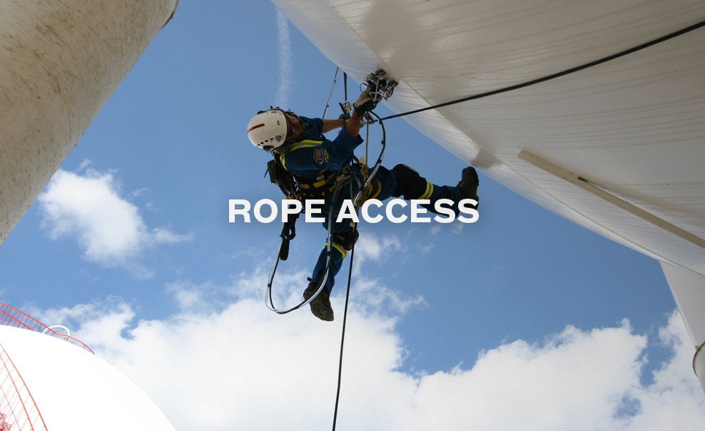 Vertical Systems International | Professional Climbers for Rope Access ...
