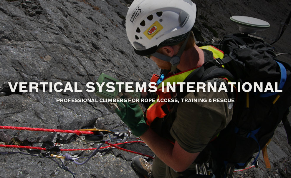 Vertical Systems International