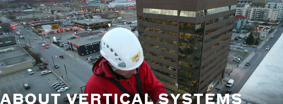 About Vertical Systems International